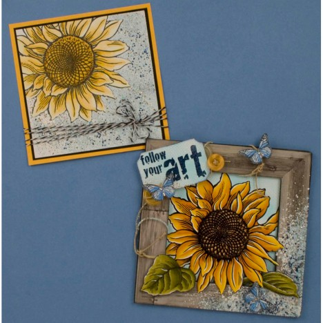 Jumbo Sunflower Cards