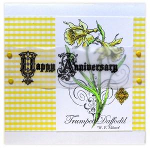 Daffodil Anniversary by Kristine Reynolds