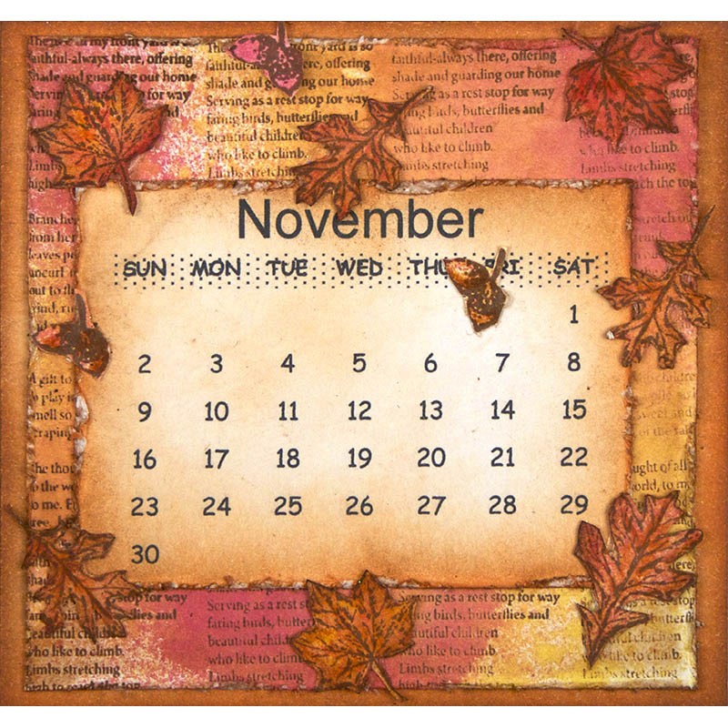November by Suzanne Czosek