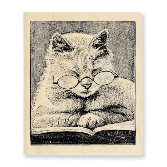 Cattus Librum Stamp