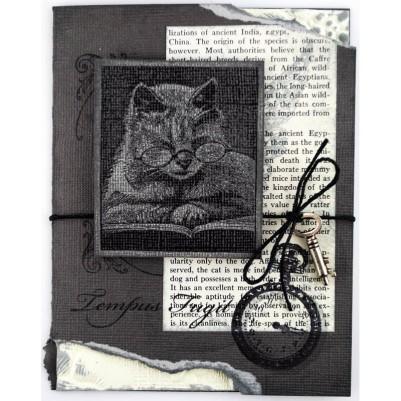 Cattus Librum by Pam Hornschu