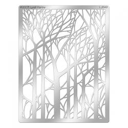 DWLJ849_Bare_trees