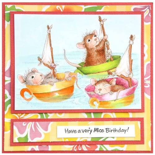 Teacup Sailing_JLB