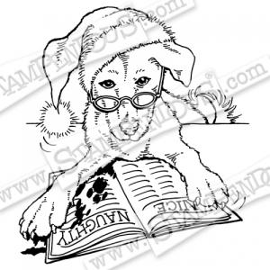 Q205_G_Santa_Dog_Watermarked-500x500