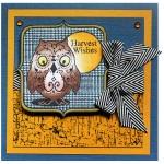 Harvest Owl by Pam Bray