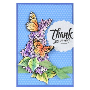 Lilac Thank You by Fran Seiford