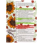 Bible Journaling by Pam Bray