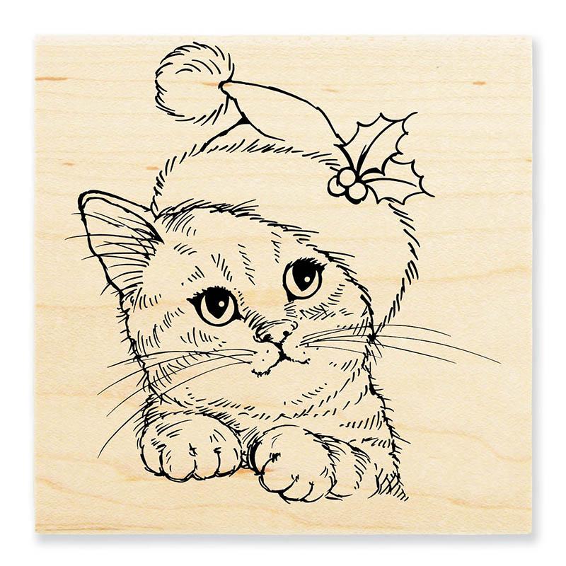 w173_wondrous_kitten_rendered_800