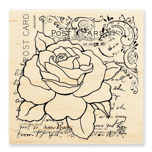 W186 Rose Postcard