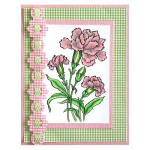 Carnation Blooms by Lea Fritts