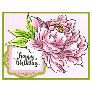 CRS5013 Fresh Peony and SSC1272 Brushed Wishes