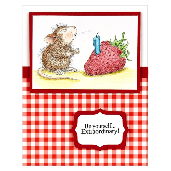 HMM18 Strawberry Wish by Debi Hammon