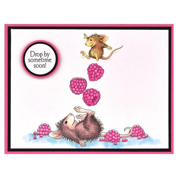 HMP84 Juggling Berries by Debi Hammons