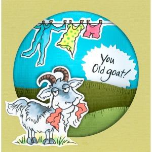 Old Goat WindowRama