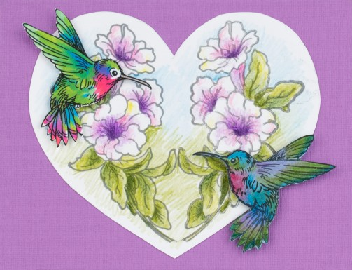 QS5020 Hummingbird Vine and SSC1330 Mirror Stamping Plate